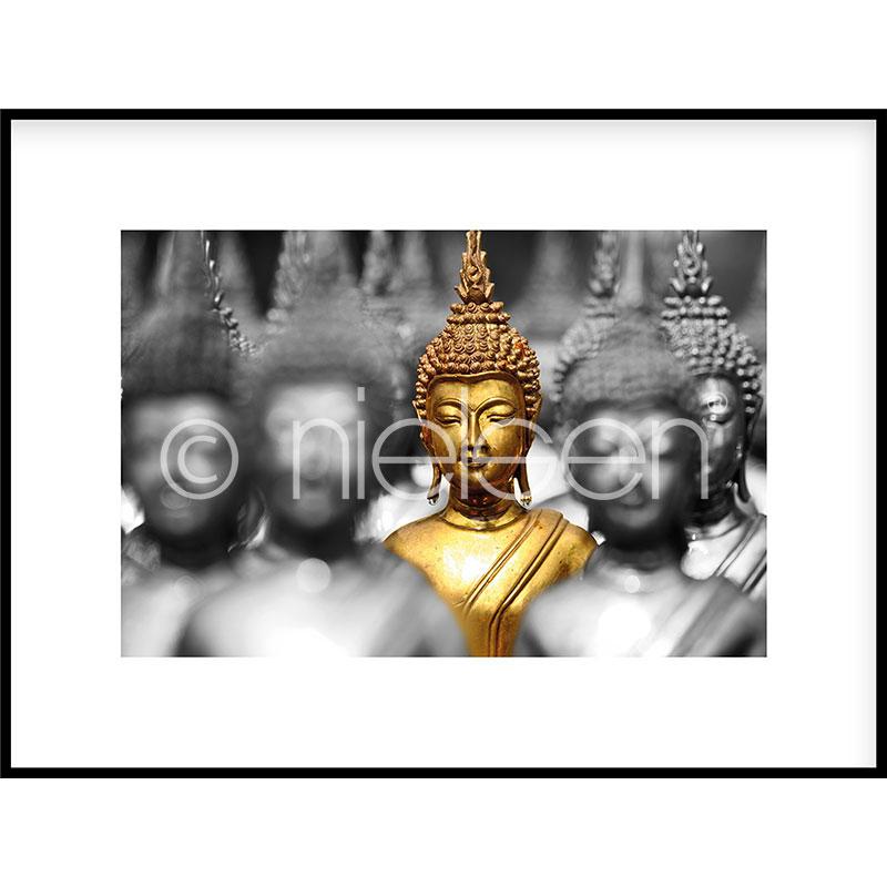 """Beeld met lijst """"Buddha in gold"""" met lijst van aluminium C2"""