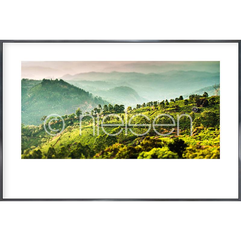 """Beeld met lijst """"Landscape of Tea Plantations"""" met lijst van aluminium Alpha"""